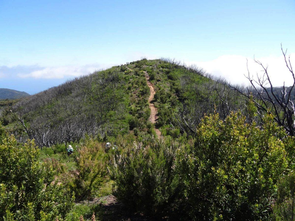 Wanderung auf La Gomera