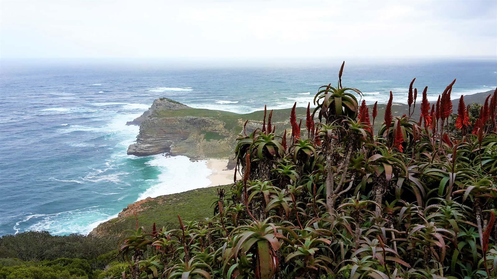 Cape Point Ausblick