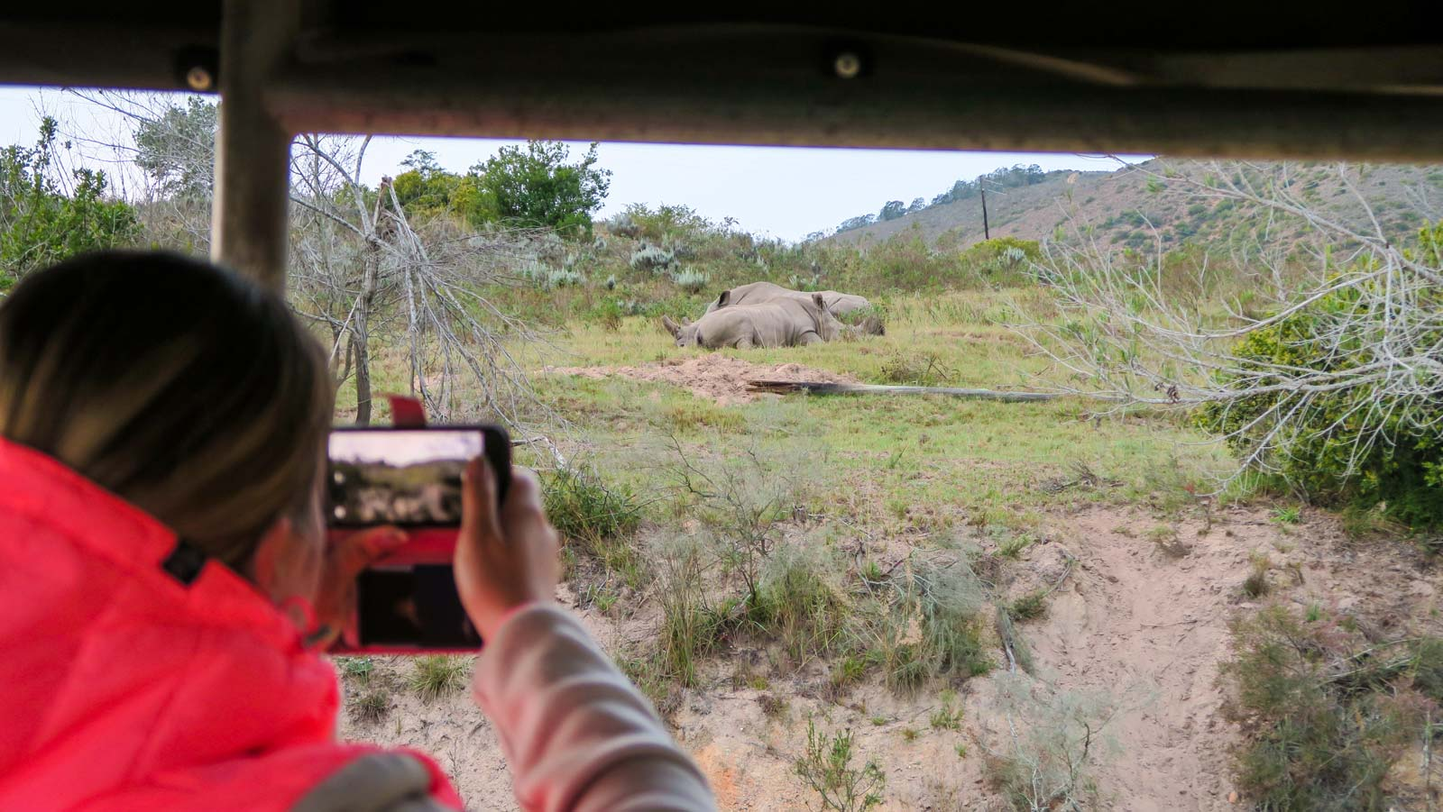 unterwegs auf Safari...